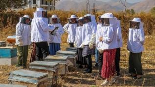 Van'ın arıcı kadınları 'Çiftçi Okulu'nda yetişiyor
