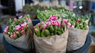 Türkiye'den 125 milyon dolarlık çiçek ihracatı